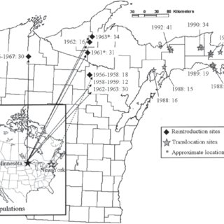 (PDF) Historical Perspective on the Reintroduction of the