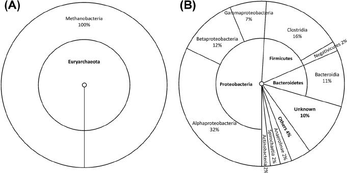 Cyclic voltammetry tests performed under abiotic (grey