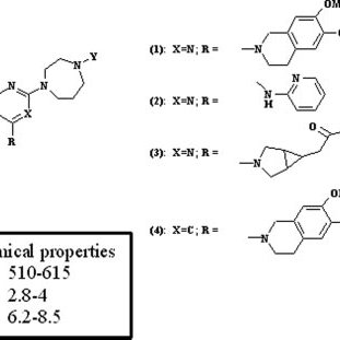 Routes of metabolism of the homo-piperazine morpholine 2