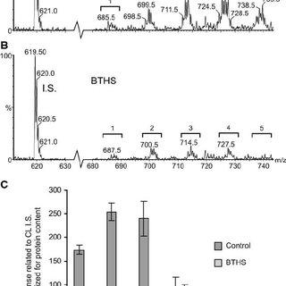 Representative mass spectra of monolysocardiolipin (MLCL
