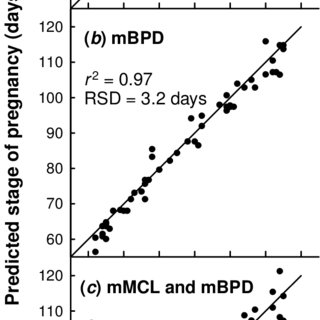 (PDF) Prediction of stage of pregnancy in prolific sheep