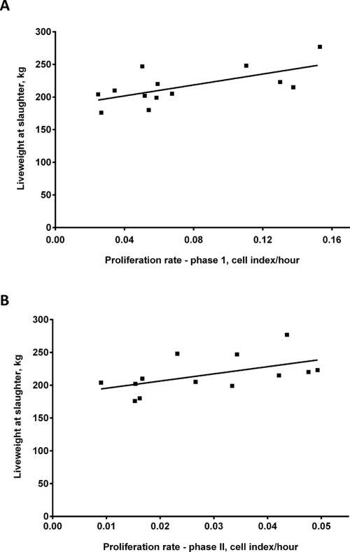 small resolution of proliferation rate of bovine primary skeletal muscle cells in vitro is positively correlated with liveweight of