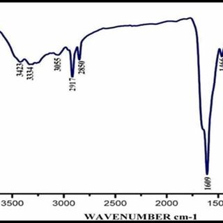 FTIR spectrum of silver nanoparticle synthesized by