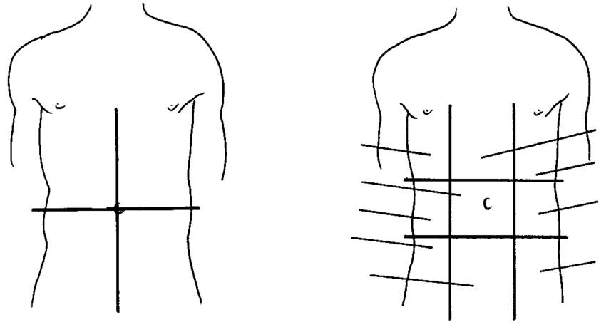 2 Anatomical areas of the abdomen: (a) quadrants; (b
