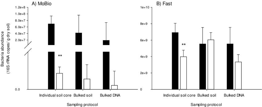 The abundance of bacteria in soil sampled under plants