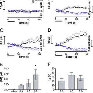 (PDF) Real-time measurement of dopamine fluctuations after