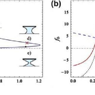 (PDF) Beetle-inspired adhesion by capillary-bridge arrays