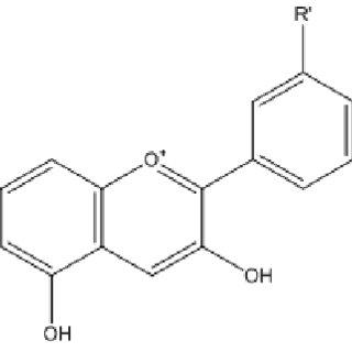 Structure of flavonols: kaempferol (R1=R2=H); quercetin
