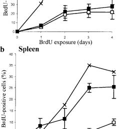 kinetics of brdu labeling of b lymphocytes of naab cigg mice in bone marrow a [ 717 x 1621 Pixel ]