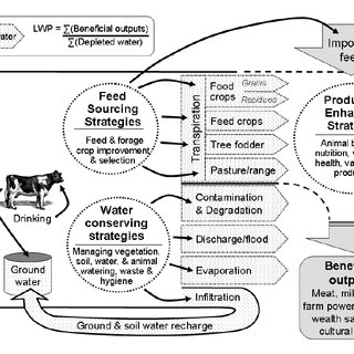 (PDF) Opportunities for increasing livestock water