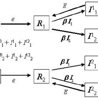 Probability and mean time to replacement. D = 5000, b = 0