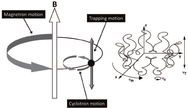 Schematic representation of the three natural motions of