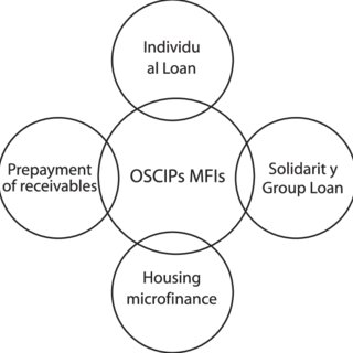 (PDF) Characteristics of microcredit offering in brazilian