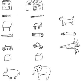 Examples of copy drawings made by ER for living things