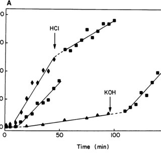 (PDF) Diffusion through Narrow Pores: Movement of Ions