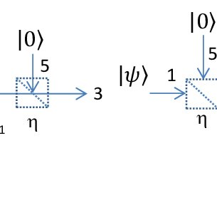 The photon distributions in the ''resonance