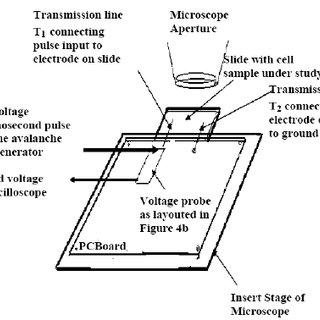 Slide Gate Wiring Diagram Diaphragm Diagram Wiring Diagram