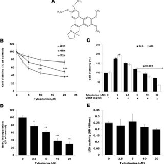 Effect of tylophorine on tumor growth and VEGFR2