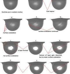 representative images to distinguish shell inside the nanofuel droplet a jab0 25  [ 850 x 1038 Pixel ]