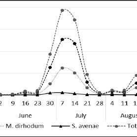 Population dynamics of general and three most common aphid