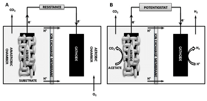 Schematic diagram of typical bioelectrochemical reactors
