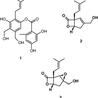 (PDF) Bioactive compounds isolated from submerged