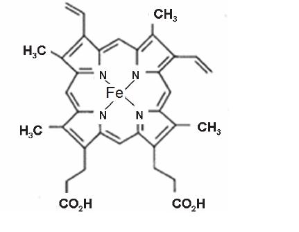 Protoporphyrin IX (PpIX) demonstrating the ferrous íon as