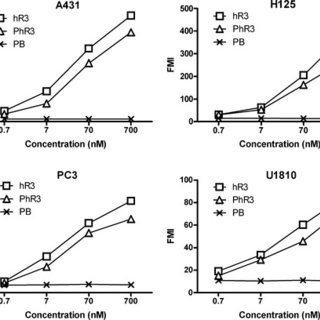 Recognition of human epidermal growth factor receptor