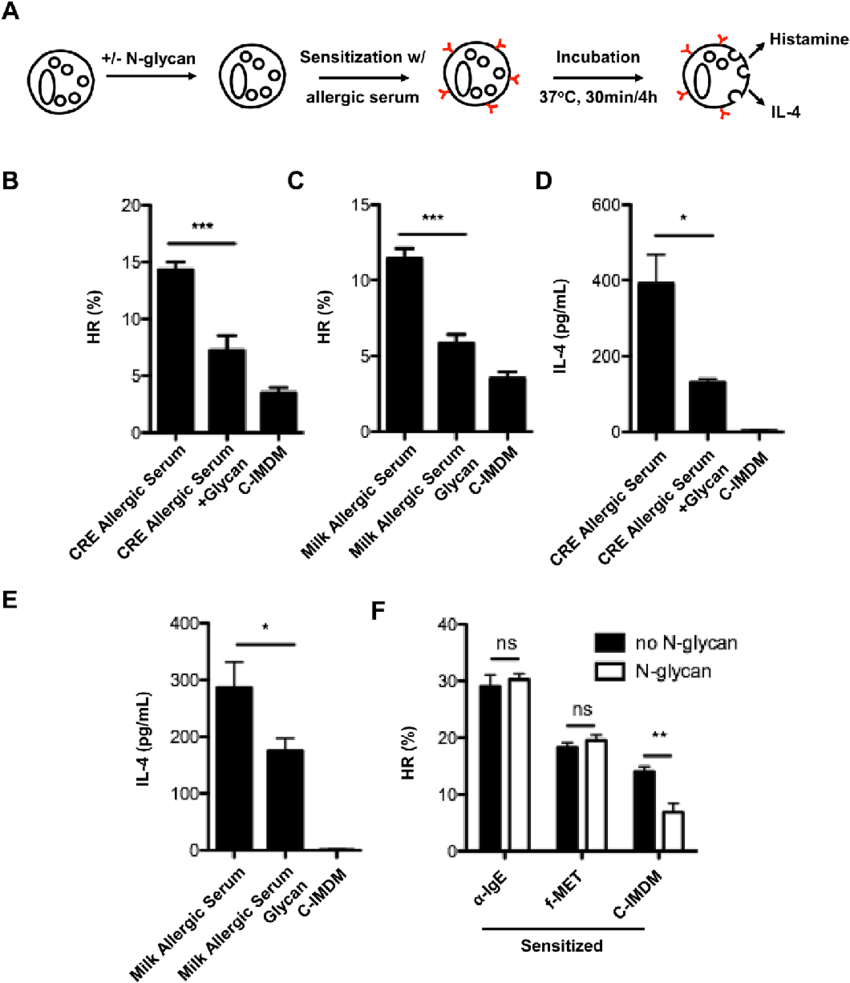 hight resolution of n glycan inhibits cockroach allergic serum induced the activation of basophils a