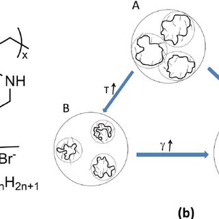 Three predominant intrinsic redox states of polyaniline