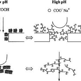 pH-sensitive polymers: (a) polyacids: poly(acrylic acid