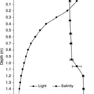 The diel vertical migration behaviour of Ceratium tripos
