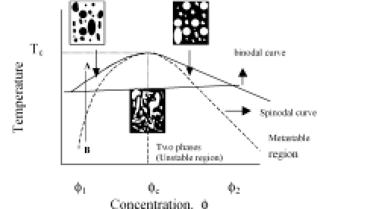 A schematic representation of a binary phase diagram of a