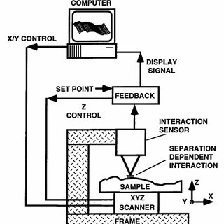 Block diagram of a force microscope equipped for both dc