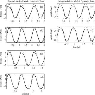 (PDF) Effector dynamics of rhythmic wrist activity and its