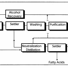 8: Process input and outputs for oil extraction of canola