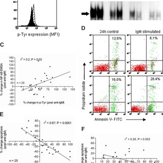 (PDF) The NF-kappaB subunit Rel A is associated with in