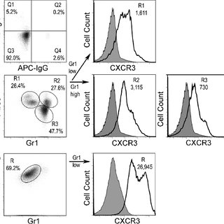 (PDF) CXCR3-dependent accumulation and activation of