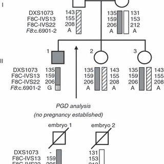 (PDF) Preimplantation genetic diagnosis of hemophilia A