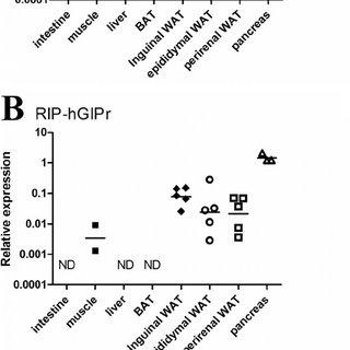 (PDF) Transgenic Rescue of Adipocyte Glucose-dependent