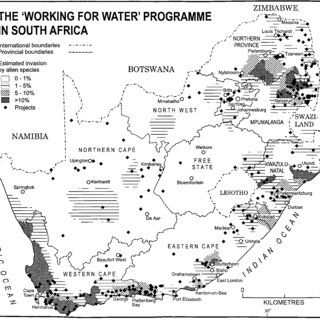 (PDF) Water shortage, deforestation and development: South
