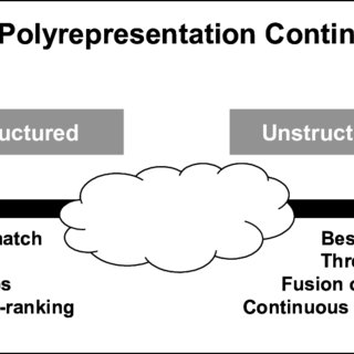 (PDF) The polyrepresentation continuum in IR
