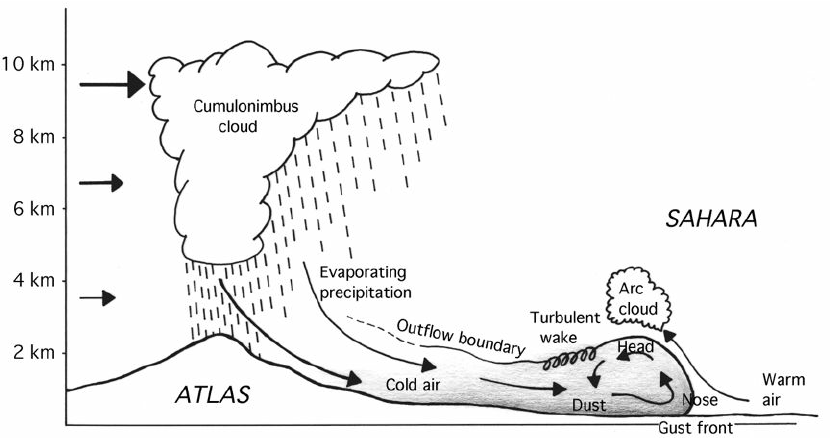 7. Schematic depiction of a convective dust storm in the