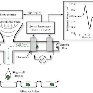 (PDF) CELLJET: Label-free cell printing via real-time