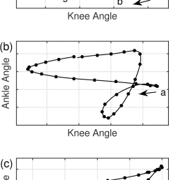 angle angle diagrams for one ideal treadmill running stride top diagram of running light [ 850 x 1672 Pixel ]