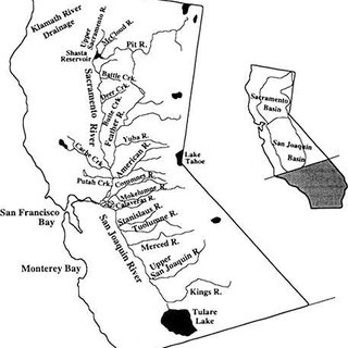 (PDF) Chinook Salmon in the California Central Valley: An