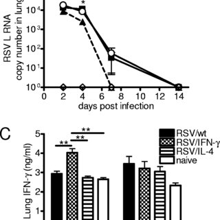 (PDF) Delivery of Cytokines by Recombinant Virus in Early