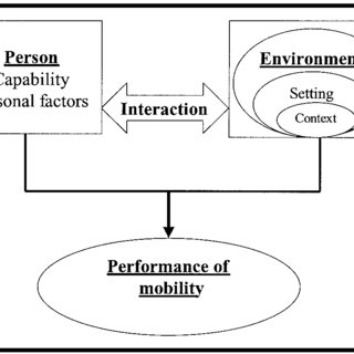 Person-environment interaction in the performance of
