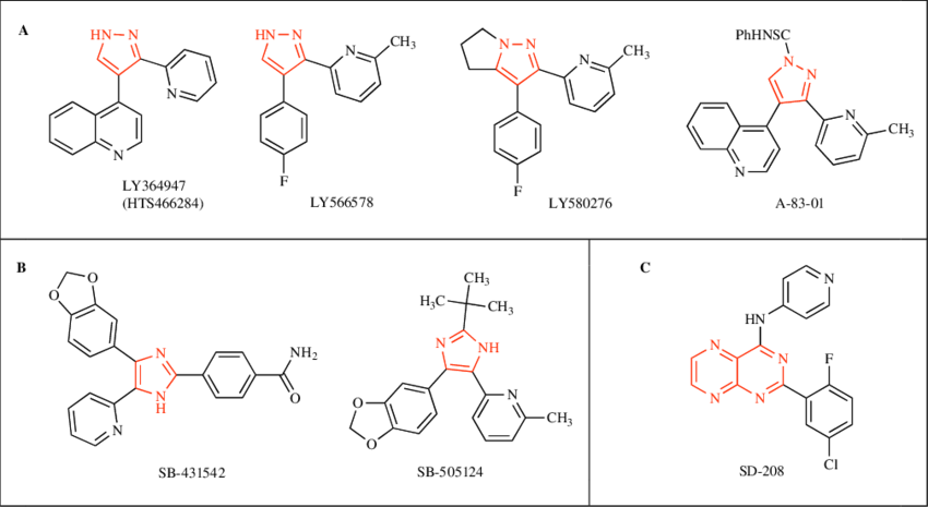 Fig. (3). Chemical structures of small molecules targeting