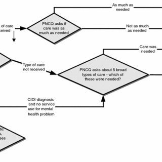 Question flow structure for the Perceived Need for Care